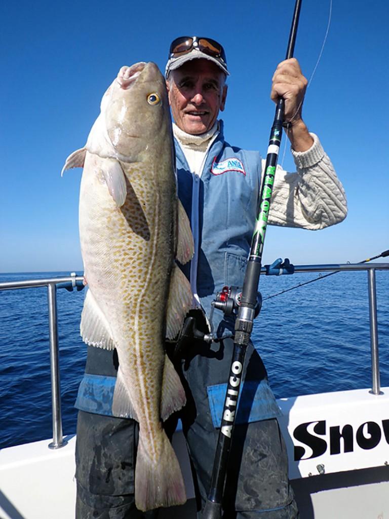 Jim-whippy-cod-artico